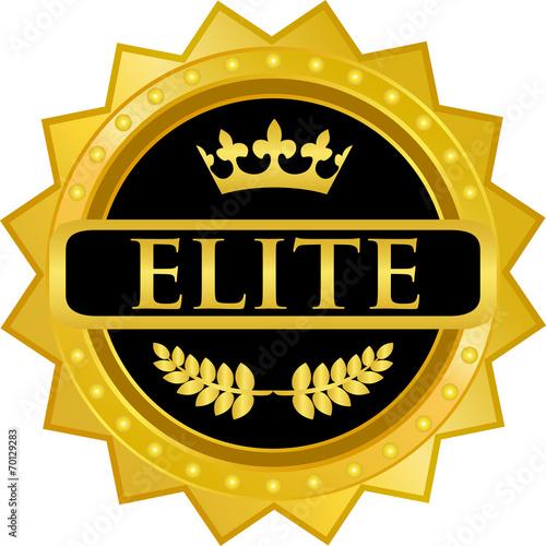 Elite Gold Badge Canvas Print