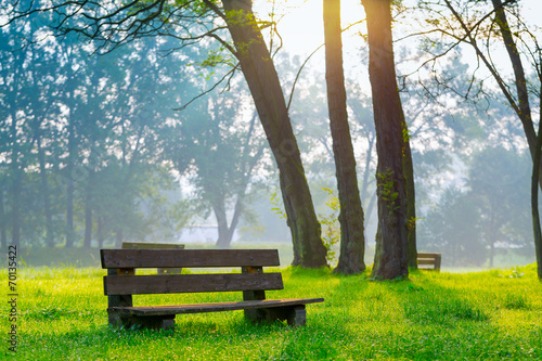 Keuken foto achterwand Natuur Park bench in the natural park of the city in the morning