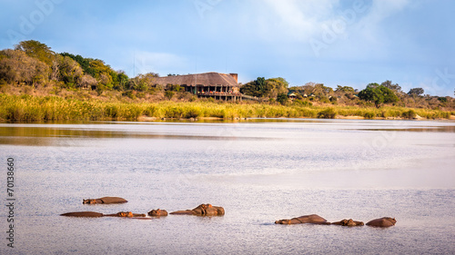 Staande foto Afrika View of the Sabie Sand River