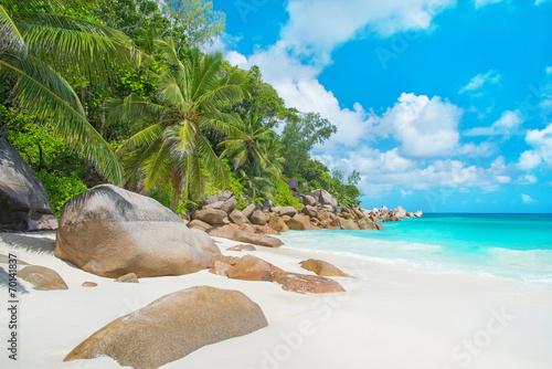 Obraz Tropikalna plaża Anse Georgette na wyspie Praslin, Seszele - fototapety do salonu