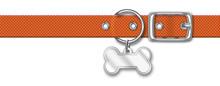 Orange Nylon Animal Collar With Tag