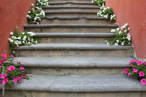 Wall Murals Stairs Flowers on stairs