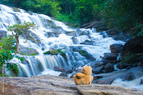 Brown bear sitting at the waterfall