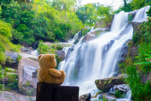 Poster Bos rivier Brown bear sitting at the waterfall