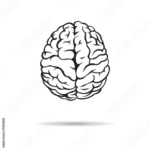 Brain icon. On the white background. Vector illustration. Poster