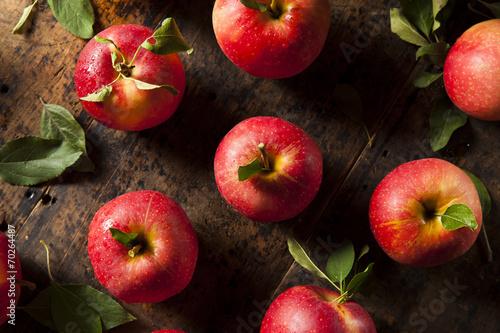 Fotografie, Obraz  Raw Organic Red Gala Apples