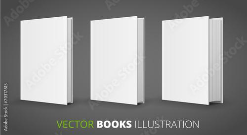 Fotografie, Obraz  Three vector books