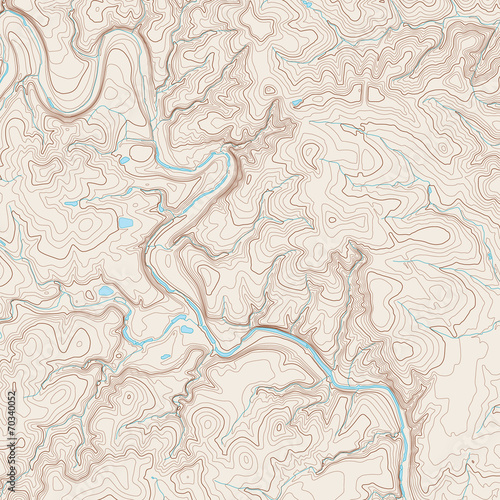 Fotomural Topographic Map