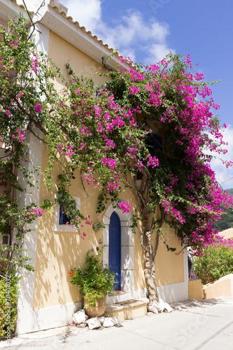 grecki-dom-z-rozowym-kwiatem
