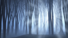 Spooky Forest Scene