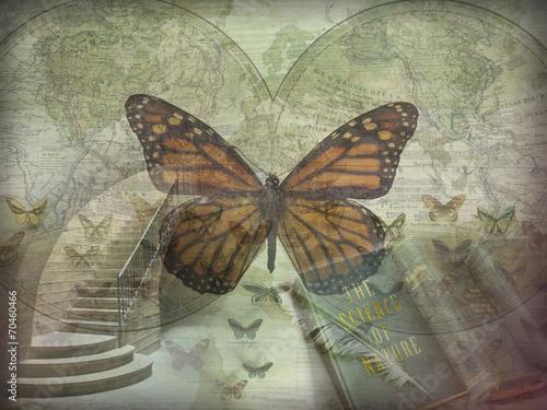 Nature Sciences Collage Canvas