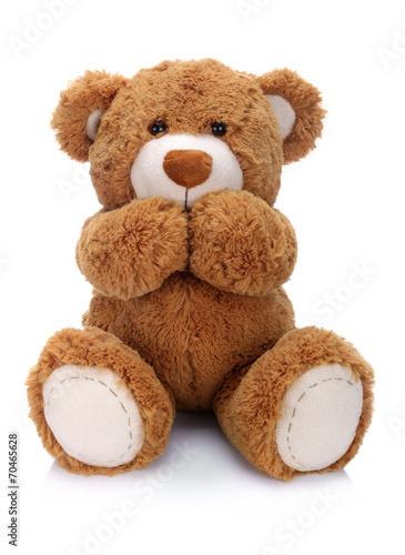 Fototapeta Teddy bear on a white background obraz