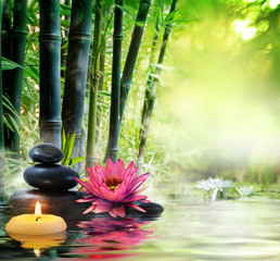 Panel Szklany Bambus massage in nature - lily, stones, bamboo - zen concept