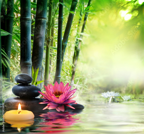 Fototapety, obrazy: massage in nature - lily, stones, bamboo - zen concept