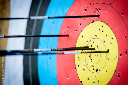 The archer has shot a lot of arrows in the target Canvas Print