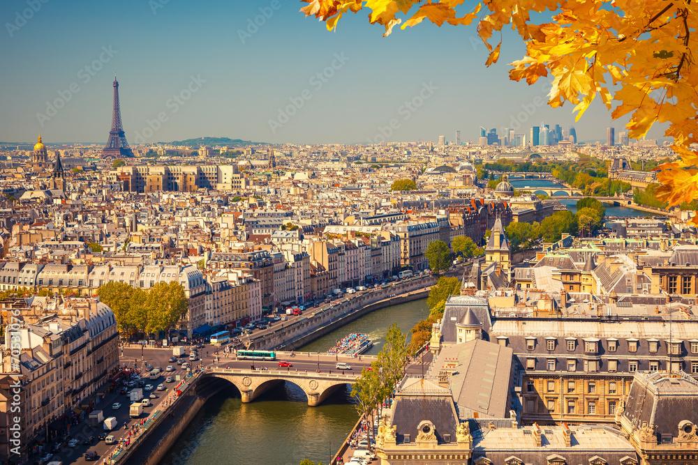 Fototapety, obrazy: Aerial view of Paris