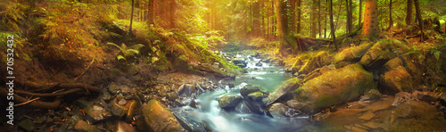 Foto auf Leinwand Fluss Panoramic view of the forest brook in the mountains
