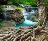 banyan tree i wapienne wodospady w czystości głęboko w lesie używać n - 70560072