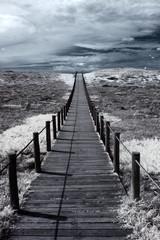 FototapetaDune walkway