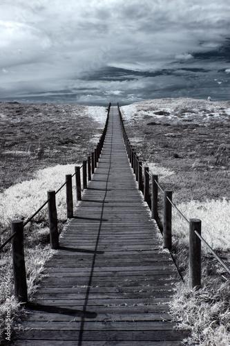 chodnik-wydm