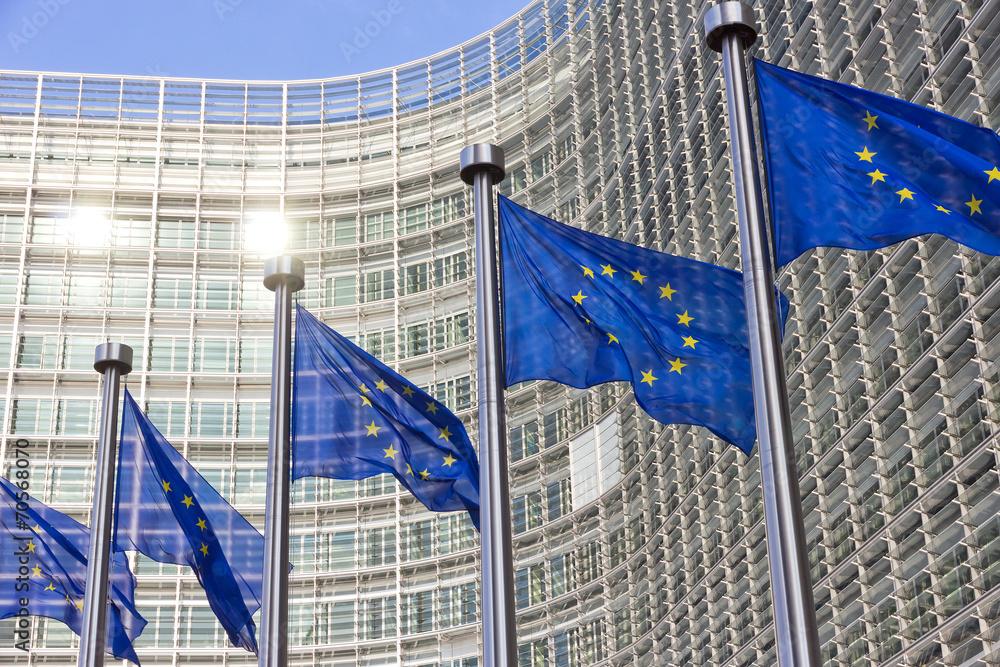 Fototapeta EU flags