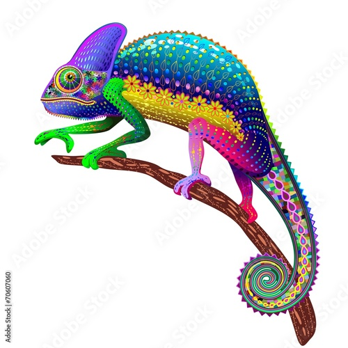 Aluminium Prints Draw Chameleon Fantasy Rainbow Colors