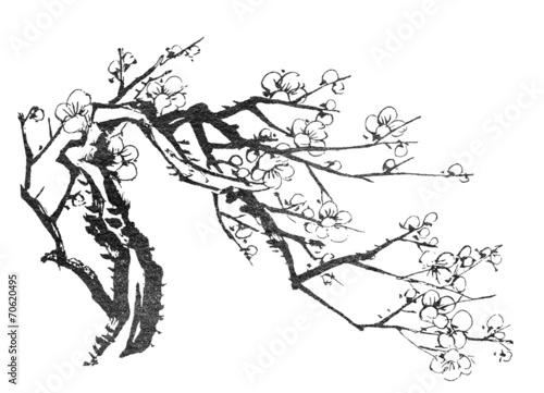 chinskie-drzewko