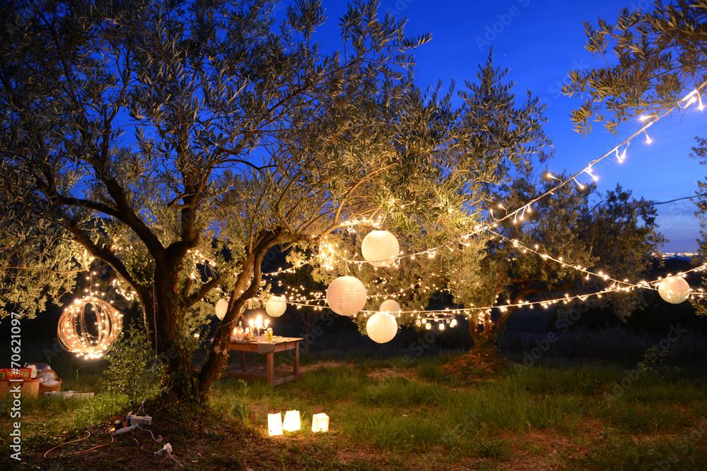 Fototapety, obrazy: Fête nocturne