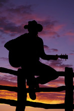 Silhouette Of Man On Fence With Guitar