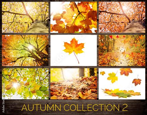 Foto op Plexiglas Landschappen Autumn Collection 2