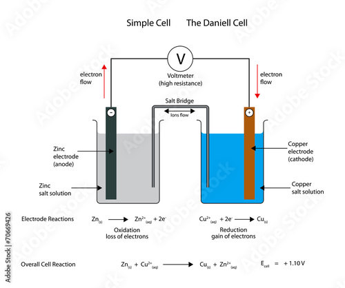 Simple  electrochemical or galvanic cell. The Daniell cell. Fotomurales