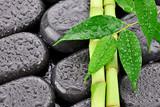 Fototapeta Kamienie - Liście z bambusami na kamieniach do spa