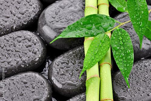 liscie-z-bambusami-na-kamieniach-do-spa