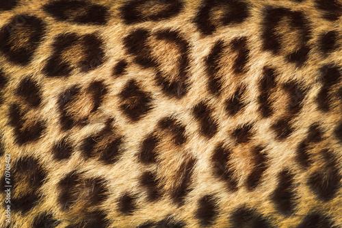 Deurstickers Luipaard detail skin of leopard