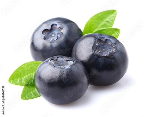 Cuadros en Lienzo Blueberry in closeup