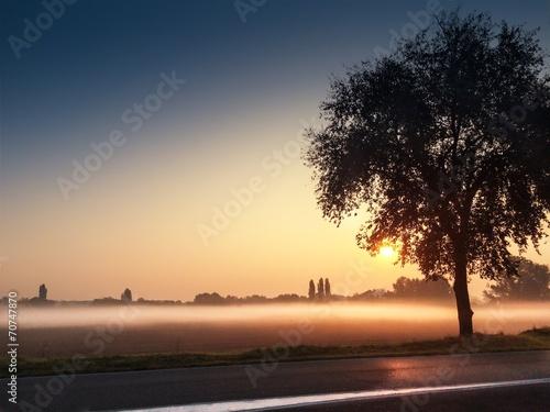 Poster  nebbia mattutina