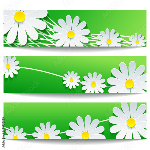 Canvas Prints Ladybugs Set of creative banners with white flower chamomile