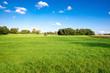 grüne Wiese, schöne Landschaft