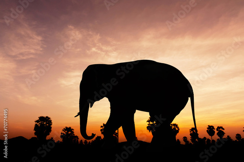 Elephant and plam tree on twilight time