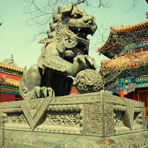 Foto op Aluminium Beijing bronze lion in Lama Temple (Beijing, China)