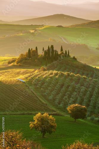 Obraz The beautiful Tuscan countryside around San Quirico d'Orcia, Ita - fototapety do salonu