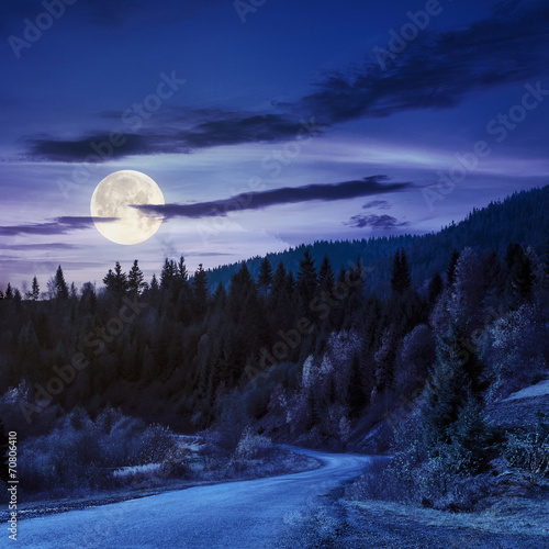 Poster Rivière de la forêt winding road to forest in mountains at night