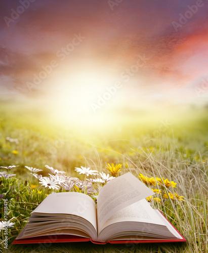Tuinposter Zwavel geel Open book