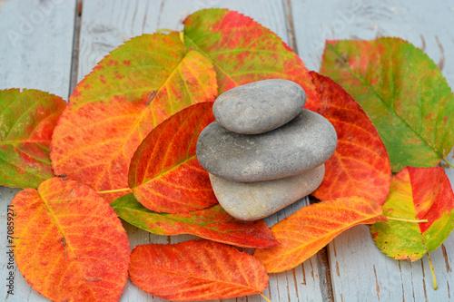 Fototapeten Natur Zen stenen met herfstbladeren op oud hout.