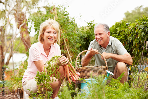 Photo Senior Couple Working On Allotment Together