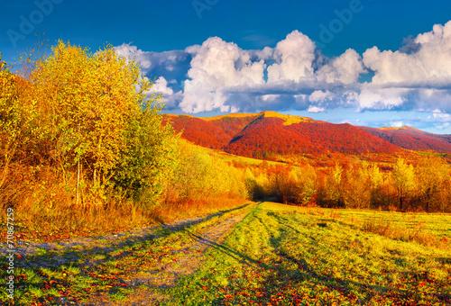 Staande foto Meloen Colorful autumn landscape in the mountains