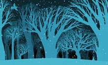 The Background Image Of The Mysterious Night Of The Winter Fores