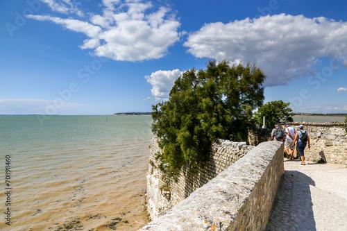Fotografie, Obraz  Estuary near a small traditional fortified village