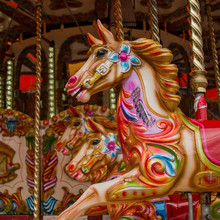 Colourful Carousel Horses