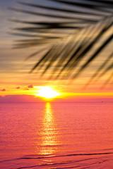 Fototapeta Morze Ocean Beauty Paradise